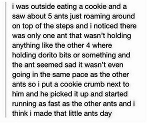 cute, ant, and funny image
