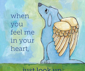 angel, grief, and quotes image