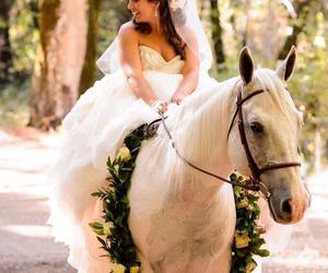 horse and wedding image