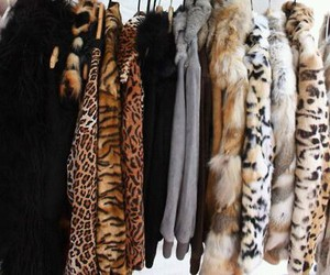 clothes, fashion, and leopard image