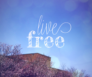 live, free, and life image