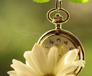 flowers, clock, and spring image