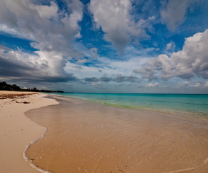bahamas, beach, and nature image