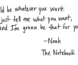 the notebook, quote, and noah image