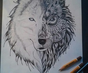 black and white, wolf, and draw image