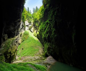 amazing, czech republic, and green image