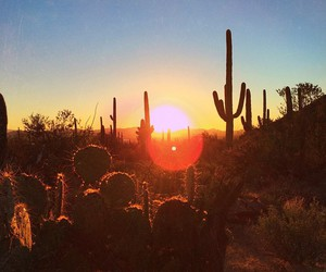 desert, nature, and photography image