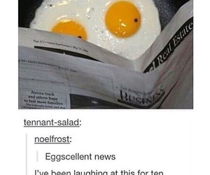 funny, eggs, and tumblr image