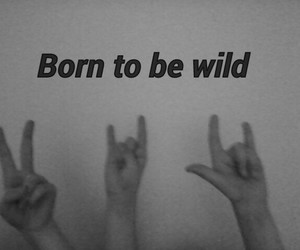 born, music, and peace image