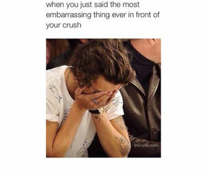 funny, crush, and Harry Styles image