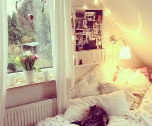 white, bedroom, and cat image
