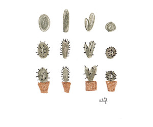 cactus and drawing image