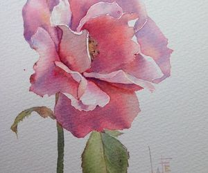art, watercolor, and painting. flower image