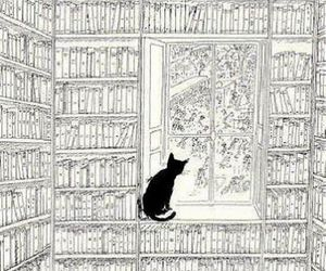 book, cat, and illustration image