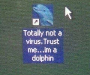 dolphin, virus, and funny image
