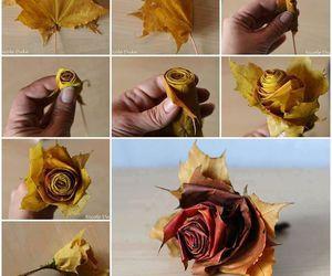 diy, rose, and autumn image