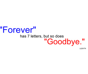 hate, qoute, and forever image