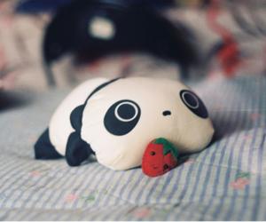 panda, pillow, and strawberry image