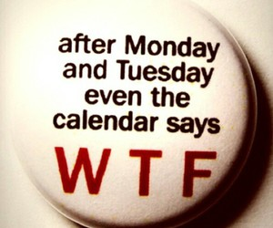 monday and wtf image