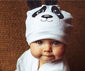 baby, cute, and panda image