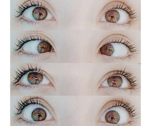 eyes, brown, and beautiful image