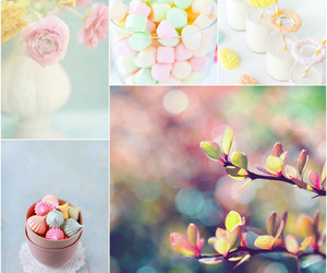 colours, decor, and flower image