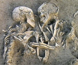 skeleton and to skeletons image