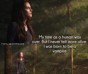 breaking dawn, bella, and book image