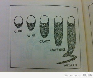 beard, wizard, and funny image