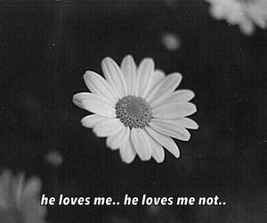 flower, me, and sad image