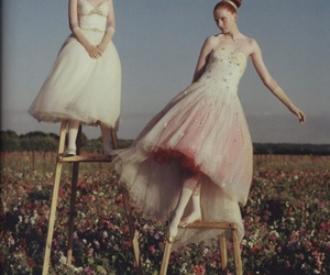 ballerinas, ballet, and roses image