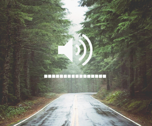 forest, music, and road image