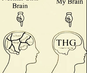 brain, thg, and fangirl image