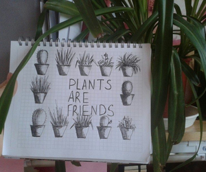 are, plants, and friends image