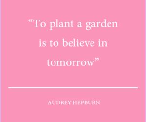 quote, audrey hepburn, and believe image