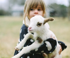 cute, animal, and kids image