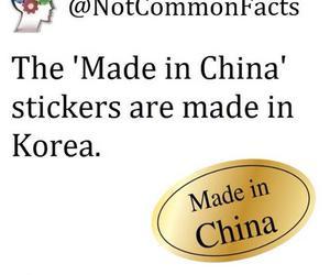 funny, lol, and korea image