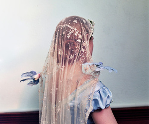 veil and bird image