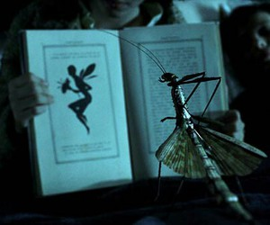 insects, pan's labyrinth, and pans image