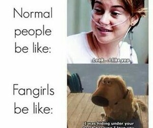 fangirls, the fault in our stars, and tfios image