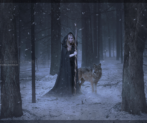 forest, girl, and wolf image