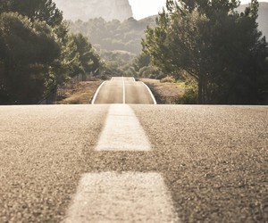 road, travel, and tree image