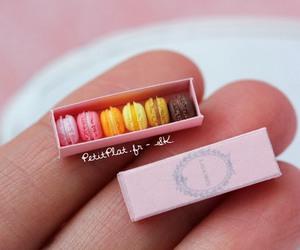 miniature and mini image