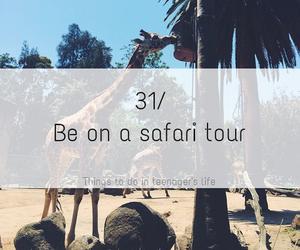 animal, life, and safari image