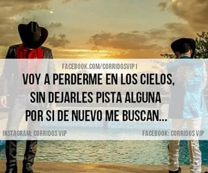frases, frases en español, and buchon image