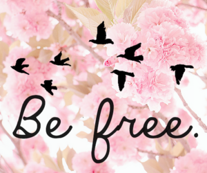 be free, black, and flowers image