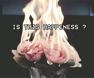 grunge, fire, and rose image