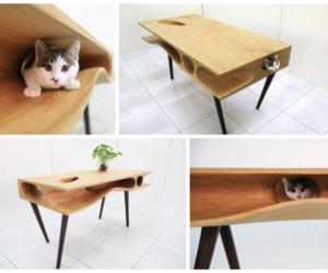 cat, design, and cute image
