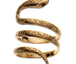 fashion, gold, and snake image