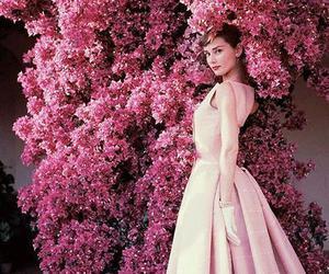 audrey hepburn, pink, and flowers image